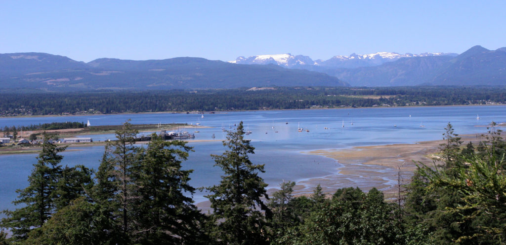 Comox Valley Estuary and Glacier